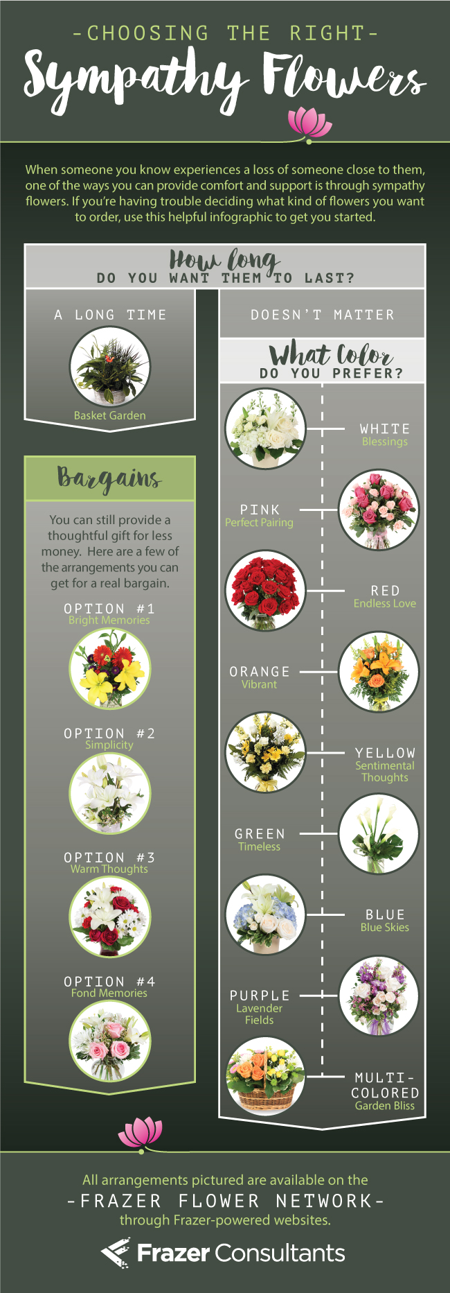 A flower infographic