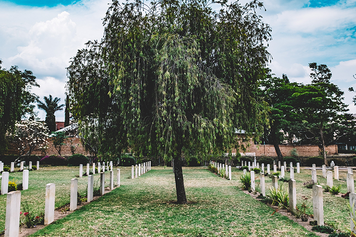 A willow tree in the middle of a graveyard
