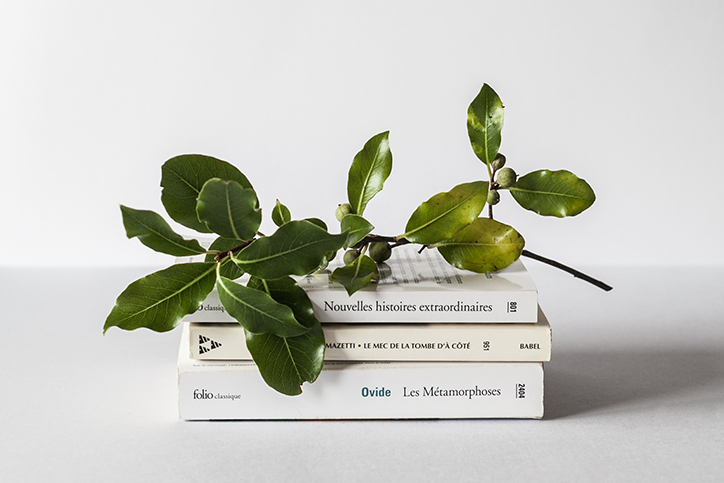 An olive branch sits atop a stack of books