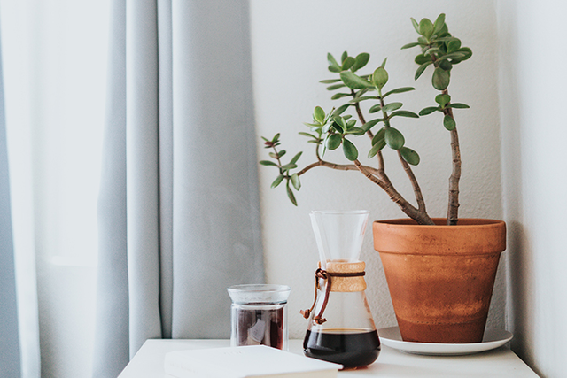 a plant, candle, and wine sit on a desk.