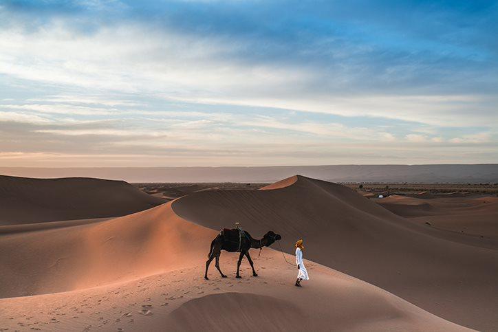 man and camel in the Sahara Desert