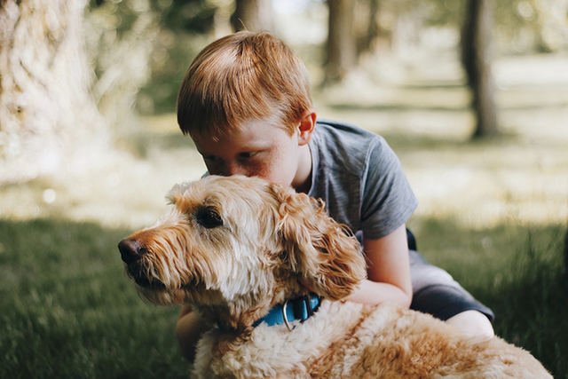 boy with goldendoodle