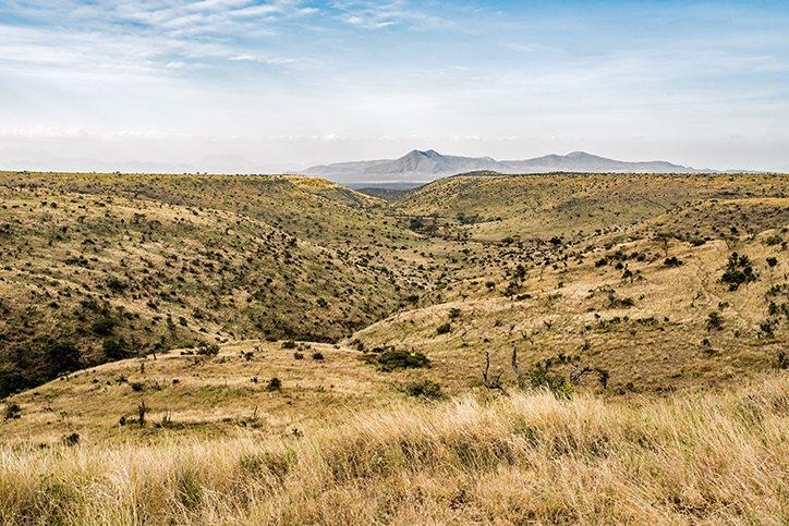 Kenyan hills