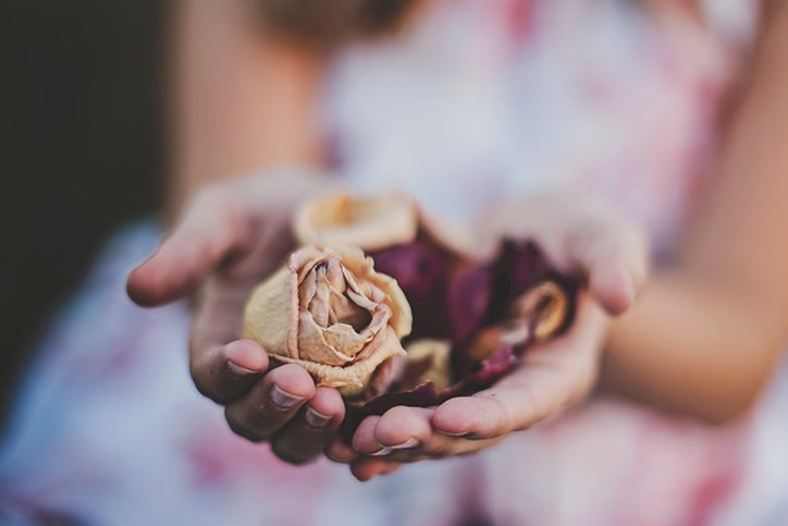Hand with dried roses