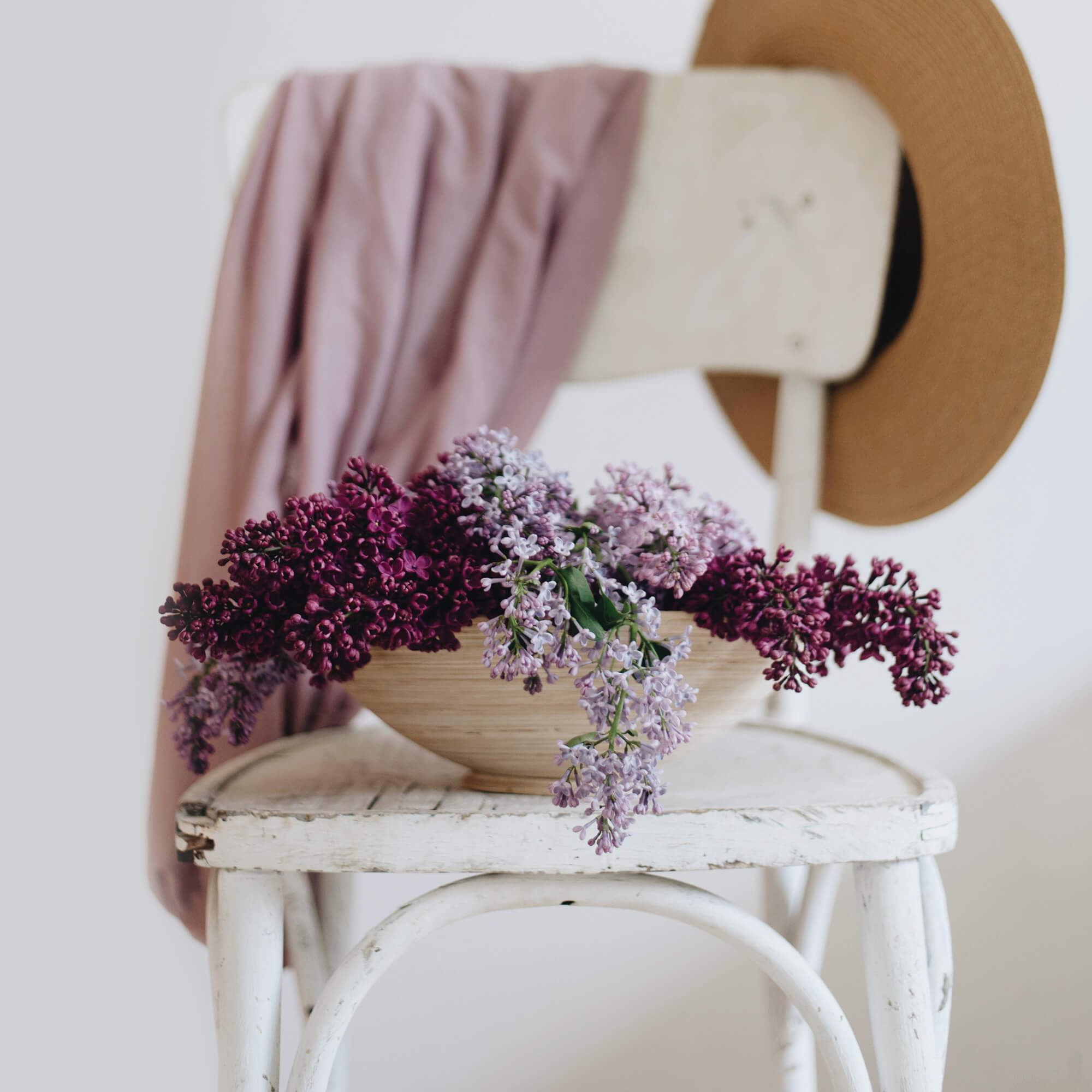 Purple flowers on a chair