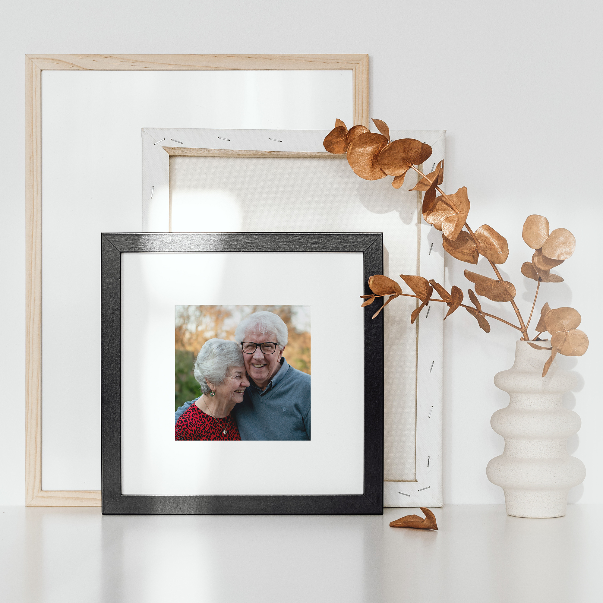 frames and a plant